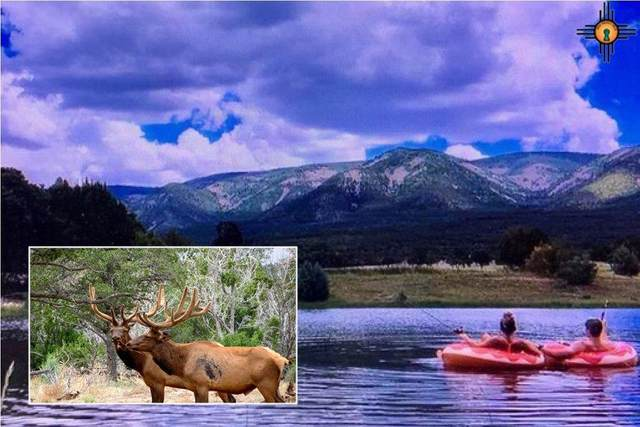 1748 N Pine Lodge Rd., Ruidoso, NM 88316 (MLS #20202247) :: Rafter Cross Realty