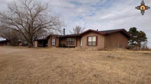 3400 W 21st, Clovis, NM 88101 (MLS #20202257) :: Rafter Cross Realty