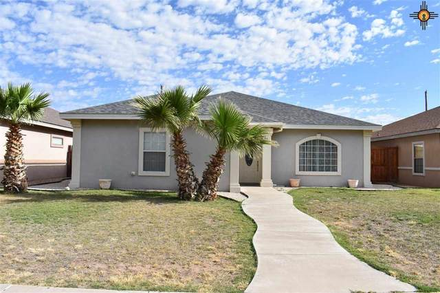 1023 Fern Dr, Roswell, NM 88203 (MLS #20202272) :: Rafter Cross Realty