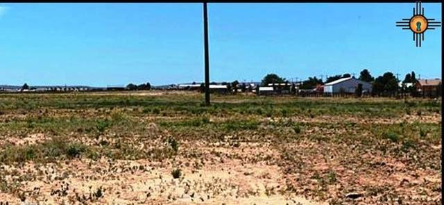 TBD S 503 Coleman Road Tract 1, Carlsbad, NM 88220 (MLS #20202273) :: Rafter Cross Realty