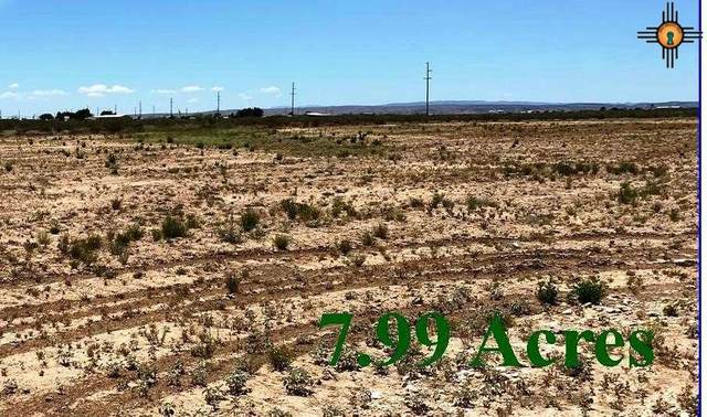 tbd S 503 Coleman Rd Tract 2, Carlsbad, NM 88220 (MLS #20202274) :: Rafter Cross Realty