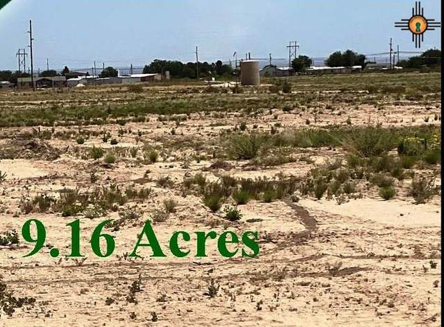 TBD S 403 Coleman Rd Tract 3, Carlsbad, NM 88220 (MLS #20202275) :: Rafter Cross Realty