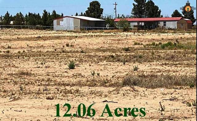 TBD S Coleman Rd Tract 4, Carlsbad, NM 88220 (MLS #20202276) :: Rafter Cross Realty