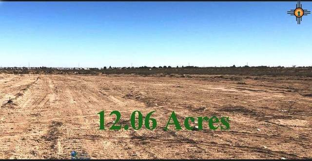 TBD S Coleman Rd Tract 5, Carlsbad, NM 88220 (MLS #20202277) :: Rafter Cross Realty