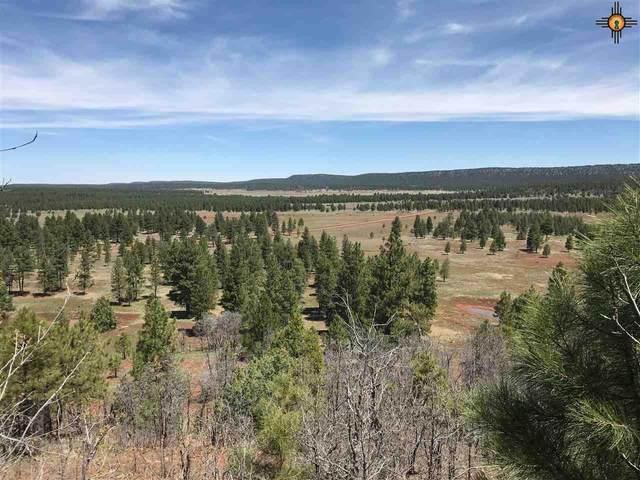 0000 Bear Springs, El Morro, NM 87321 (MLS #20202612) :: The Bridges Team with Keller Williams Realty
