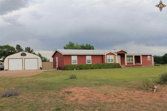 706 Billy The Kid, Fort Sumner, NM 88119 (MLS #20202682) :: Rafter Cross Realty