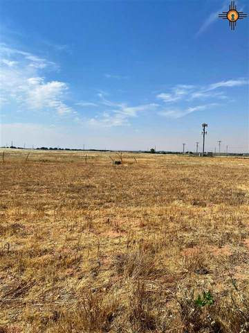000 Dillon Wood, Portales, NM 88130 (MLS #20202908) :: Rafter Cross Realty