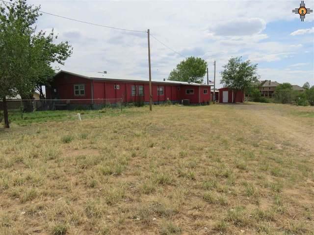 105 Laguna Circle, Logan, NM 88426 (MLS #20203256) :: Rafter Cross Realty