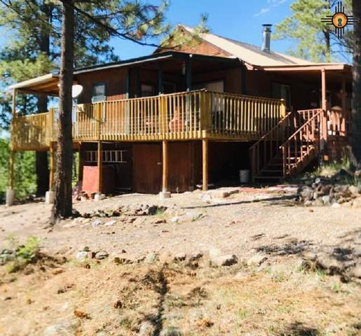 12 Oak Rd, Guadalupita, NM 87722 (MLS #20203317) :: Rafter Cross Realty