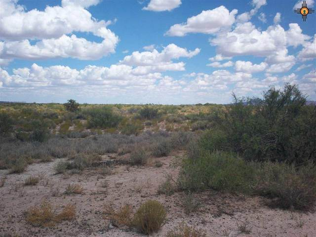 000 Nabo Rd. Sw, Deming, NM 88030 (MLS #20203459) :: Rafter Cross Realty