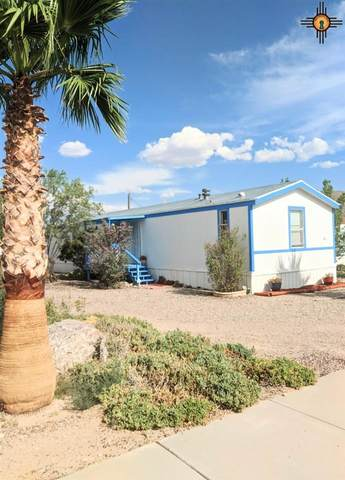 811 N Maple, Truth Or Consequences, NM 87901 (MLS #20203474) :: Rafter Cross Realty