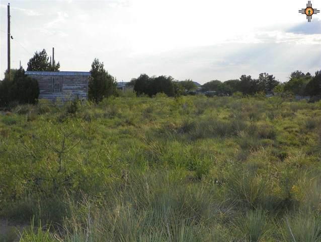 0 Ridge Drive, Conchas Dam, NM 88416 (MLS #20203564) :: The Bridges Team with Keller Williams Realty