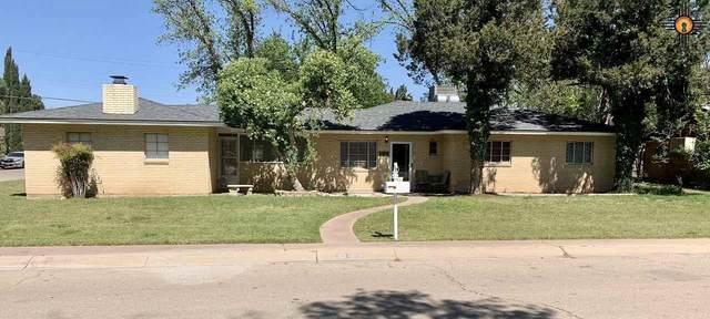1509 Bryan Circle, Carlsbad, NM 88220 (MLS #20203625) :: Rafter Cross Realty