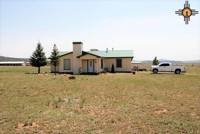 14 Long Road, Raton, NM 87740 (MLS #20203656) :: Rafter Cross Realty