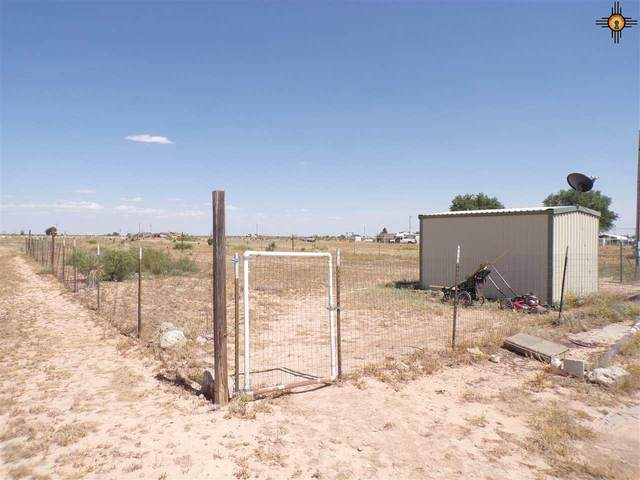 1203 Cholla Ave, Hope, NM 88250 (MLS #20203777) :: Rafter Cross Realty