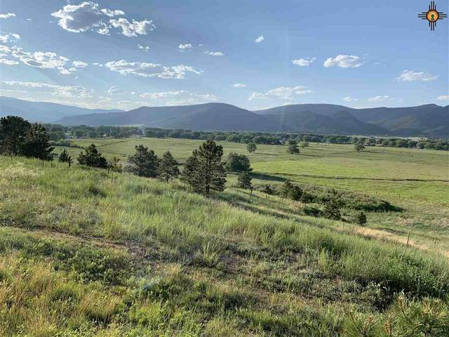 County Road A032, Mora, NM 87732 (MLS #20203861) :: Rafter Cross Realty