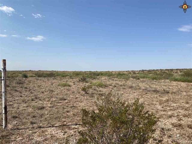 622 Jicarilla, Lake Arthur, NM 88253 (MLS #20203874) :: Rafter Cross Realty