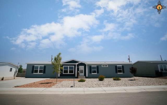 4214 Magnolia Street, Carlsbad, NM 88220 (MLS #20203923) :: Rafter Cross Realty