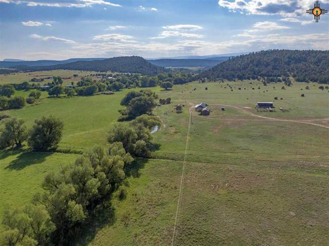 260 Cr Co 13, Buena Vista, NM 87736 (MLS #20203978) :: Rafter Cross Realty