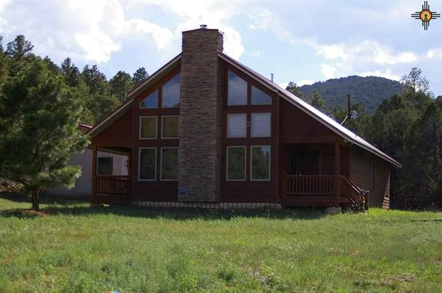 2070 State Hwy 120, Ocate, NM 87734 (MLS #20203995) :: Rafter Cross Realty