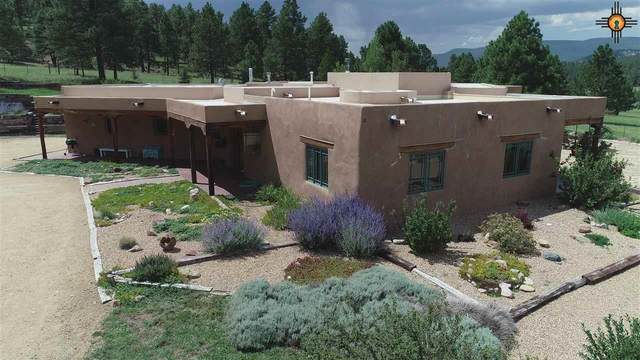 310 Cr A011, Mora, NM 87732 (MLS #20204009) :: Rafter Cross Realty