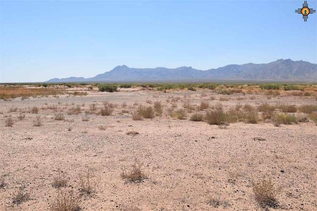 0000 Colorado Ave, Deming, NM 88030 (MLS #20204028) :: Rafter Cross Realty