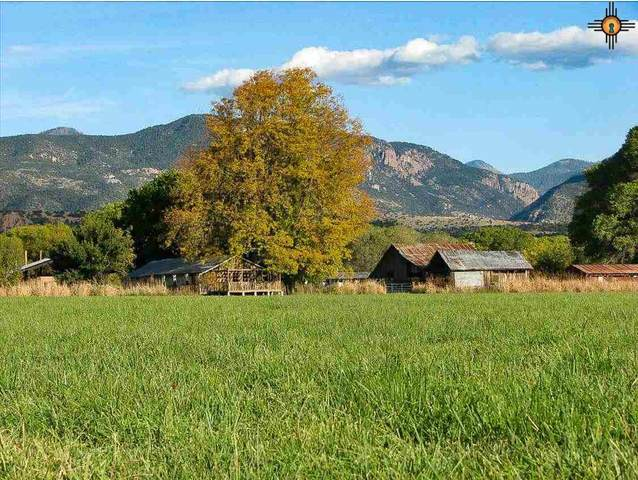 33 Ws Ranch Road, ALMA, NM 88039 (MLS #20204146) :: The Bridges Team with Keller Williams Realty