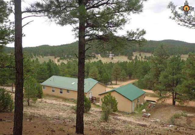 301 Cra011, Mora, NM 87732 (MLS #20204221) :: Rafter Cross Realty