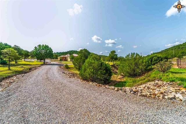 137 Chama Canyon Rd, Ruidoso, NM 88312 (MLS #20204243) :: Rafter Cross Realty