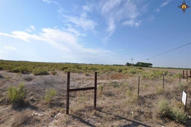 R-547 N 26th Street, Artesia, NM 88210 (MLS #20204274) :: Rafter Cross Realty