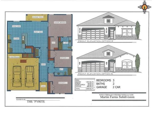 402 Pima Drive, Carlsbad, NM 88220 (MLS #20204324) :: Rafter Cross Realty