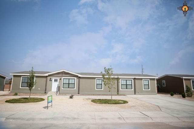 4206 Balsa Street, Carlsbad, NM 88220 (MLS #20204334) :: Rafter Cross Realty