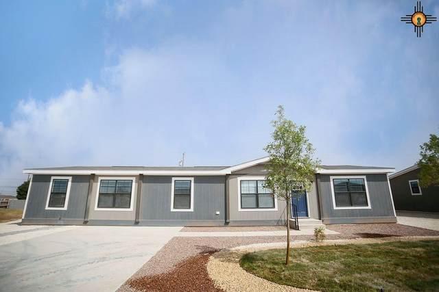 4204 Balsa Street, Carlsbad, NM 88220 (MLS #20204340) :: Rafter Cross Realty