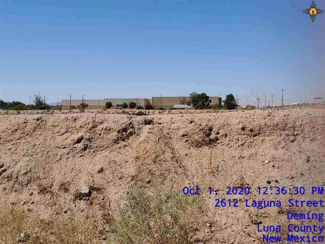 00 Tovar Rd Ne, Deming, NM 88030 (MLS #20204462) :: Rafter Cross Realty