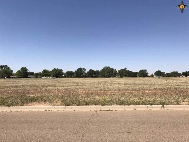 112 Colonial Estates Parkway, Clovis, NM 88101 (MLS #20204465) :: Rafter Cross Realty