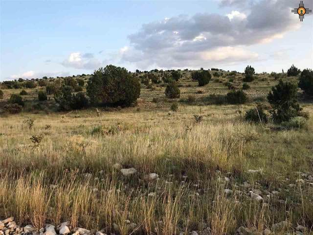 388 Rim Rd., Pinon, Nm, Roswell, NM 88354 (MLS #20204503) :: Rafter Cross Realty