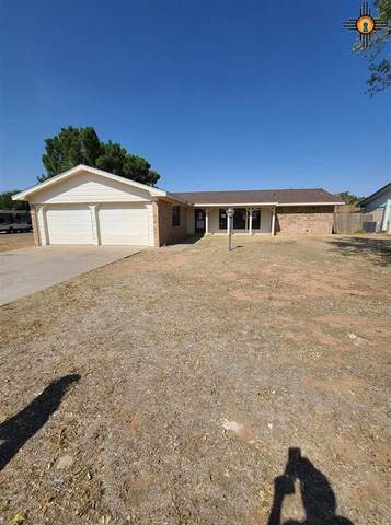 1201 Gemini Circle, Portales, NM 88130 (MLS #20204545) :: Rafter Cross Realty
