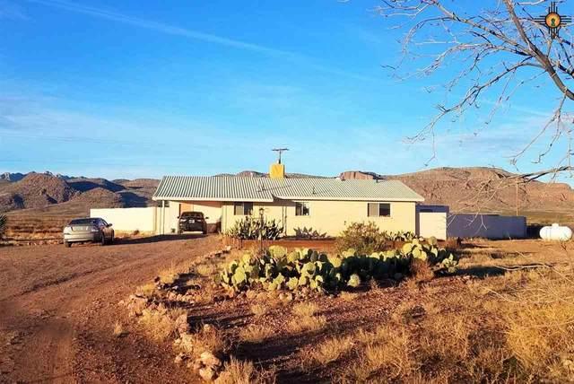 4270 El Mar Rd Se, Deming, NM 88030 (MLS #20204645) :: Rafter Cross Realty