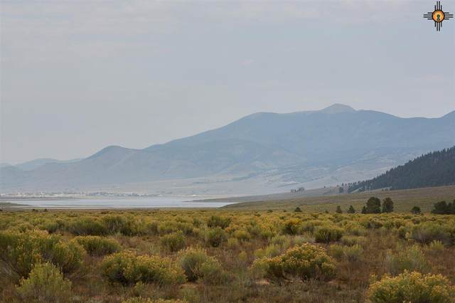 LOT 13D Squash Blossom Ranch, Eagle Nest, NM 87718 (MLS #20204676) :: Rafter Cross Realty