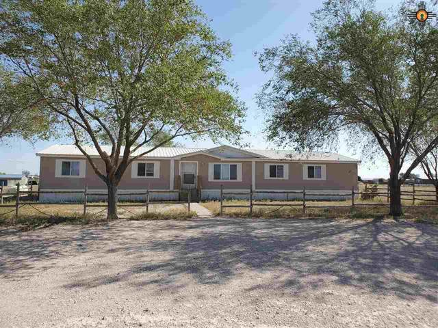 749 Southern Pine Hills Rd, Portales, NM 88130 (MLS #20204681) :: Rafter Cross Realty