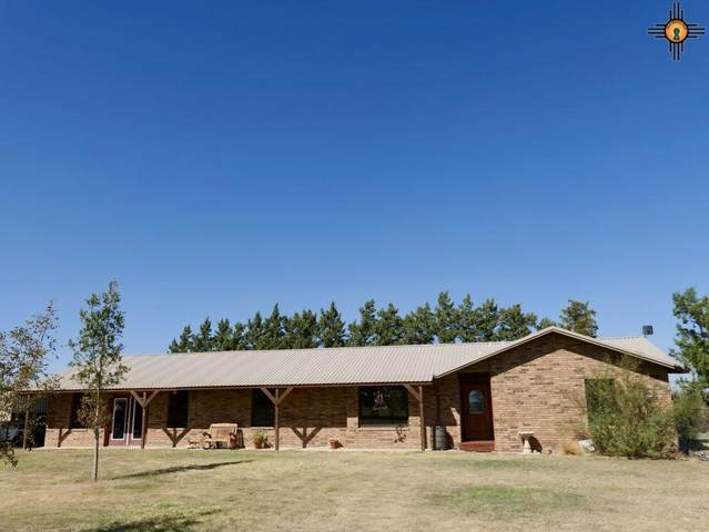 824 Nm 88, Portales, NM 88130 (MLS #20204682) :: Rafter Cross Realty