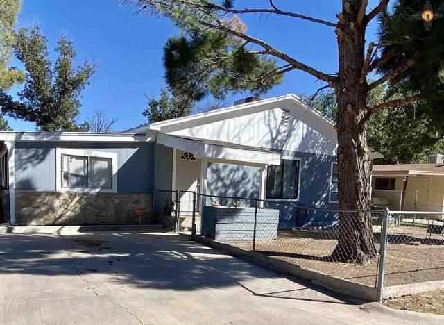 302 N Fourth St, Carlsbad, NM 88220 (MLS #20204697) :: Rafter Cross Realty
