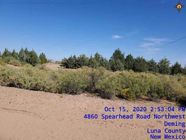 4895 Spearhead Nw, Deming, NM 88030 (MLS #20204698) :: Rafter Cross Realty