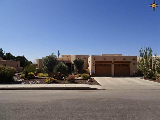 3000 Bogie Court Se, Deming, NM 88031 (MLS #20204720) :: Rafter Cross Realty