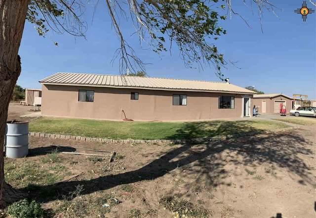 475 SW Monte Vista, Deming, NM 88030 (MLS #20204726) :: Rafter Cross Realty