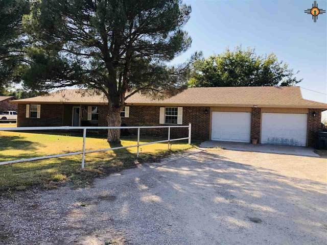 4405 S Thomason Rd., Carlsbad, NM 88220 (MLS #20204756) :: Rafter Cross Realty