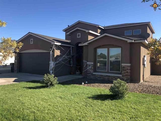 319 Warachie Lane, Carlsbad, NM 88220 (MLS #20204901) :: Rafter Cross Realty