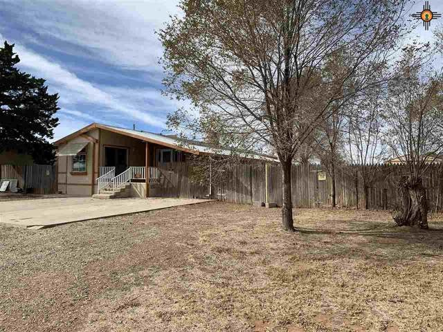 612 Florence, Texico, NM 88135 (MLS #20204934) :: Rafter Cross Realty