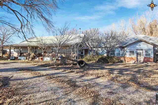 3509 E Dakota, Lovington, NM 88260 (MLS #20204946) :: Rafter Cross Realty