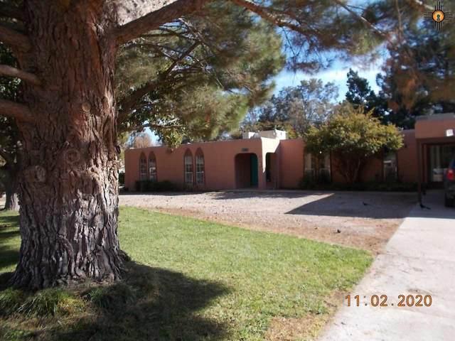 1307 S Country Club Circle, Carlsbad, NM 88220 (MLS #20204955) :: Rafter Cross Realty